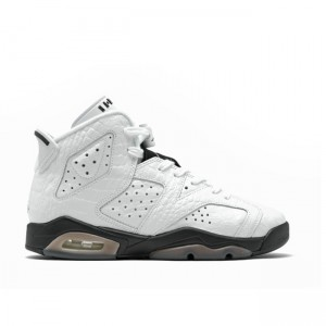 Air Jordan 6 Alligator GS 384665-110